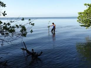 La biodiversidad de Latinoamérica revulsivo para el  turismo y mitigación del cambio climático