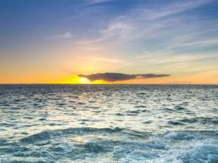 El mayor cambio del ecosistema del Océano Atlántico esta produciéndose actualmente